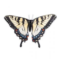 Hearth Song Butterfly Wings – Swallow Tail