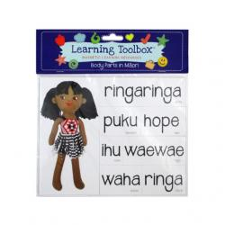 Learning Toolbox Body Parts in Māori