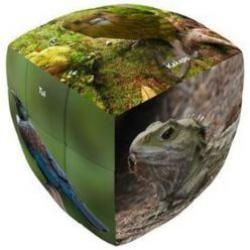 V Cube - New Zealand Wildlife Edition